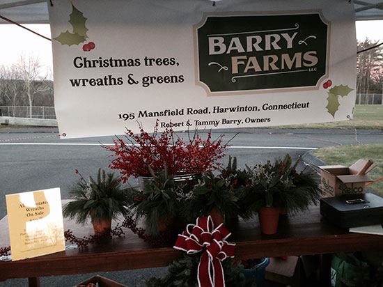 Christmas tree farm booth at Harwinton's Hometown Holiday Celebration